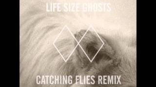 Mt. Wolf   Life Size Ghosts (Catching Flies Remix)