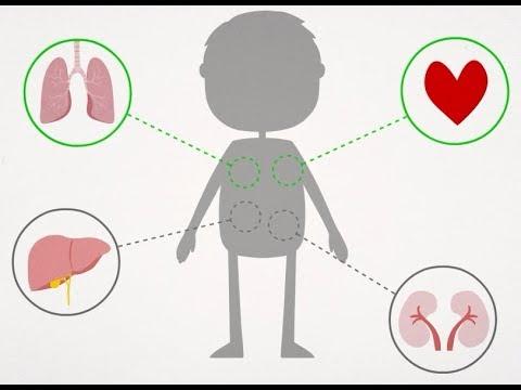 Fisioterapia e trasplantes