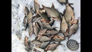 Платная рыбалка на рефтинское водохранилище