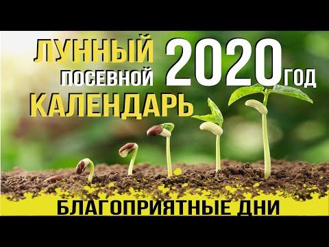 ЛУННЫЙ ПОСЕВНОЙ КАЛЕНДАРЬ на 2020 год, благоприятные дни, знаки зодиака от АГРОМАРКЕТ