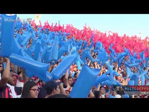 """San Lorenzo Fans - Top 5 Chants"" Barra: La Gloriosa Butteler • Club: San Lorenzo • País: Argentina"