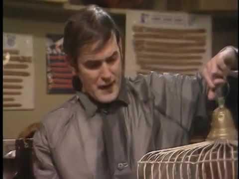Monty Python – Mrtvý papoušek