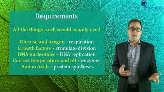 Essentials Concept Video - Cell Culturing
