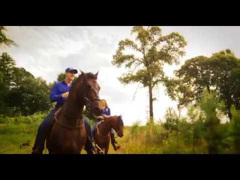 Gascon Horsemanship