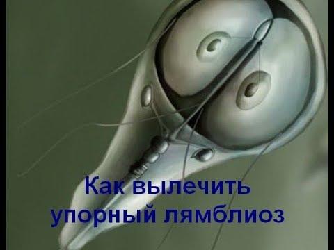Paraziți ai bacilului laterosporus