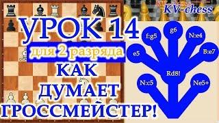 Как думает гроссмейстер - шахматный Урок 14 для 2 разряда.