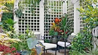 50 + Cheap Diy Lattice Fence Ideas For The Garden | Diy Cheap Garden Ideas