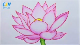 Lotus Flower - How To Draw A Lotus Flower For Beginners