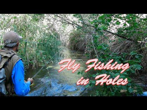 Técnicas de Pesca a Mosca Seca en Ríos Pequeños