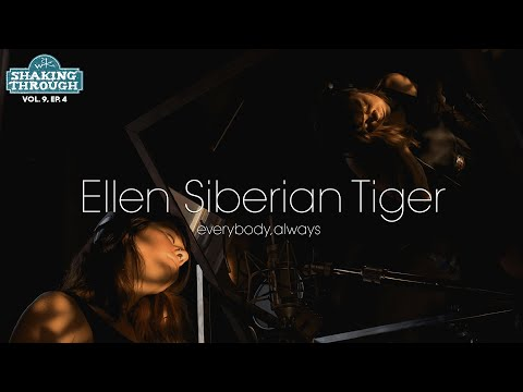 """playing bass for Ellen Siberian Tiger's song """"Everybody, Always"""" on Weathervane Music's Shaking Through Sessions"""