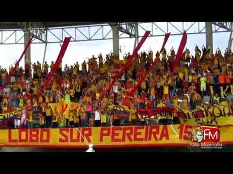 """""""Pereira vs bogotá, cantos de Lobo sur Pereira"""" Barra: Lobo Sur • Club: Pereira"""