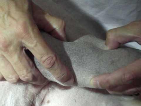 Come aiutare le articolazioni quando si estende
