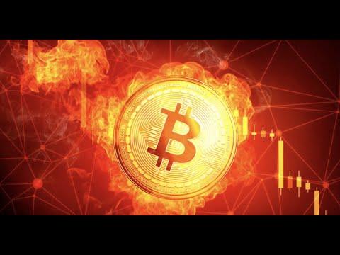 Bitcoin sandorių žurnalas