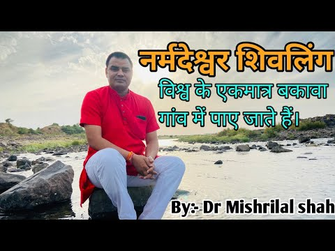 Narmada Large Shiva Lingams