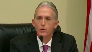 Trey Gowdy Dumbfounded by New Orleans Immigration Policies