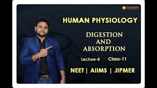 How to Prepare & Crack NEET AIIMS JIPMER Exam 2020 (Online Biology Classes) |  Invincible eLearning