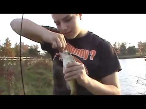 Bass Fishing The Local Pond