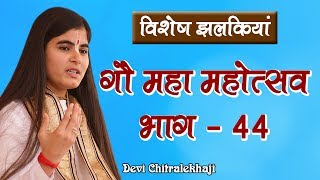 विशेष झलकियां - गौ महा महोत्सव भाग - 44  गौ सेवा धाम Devi Chitralekhaji