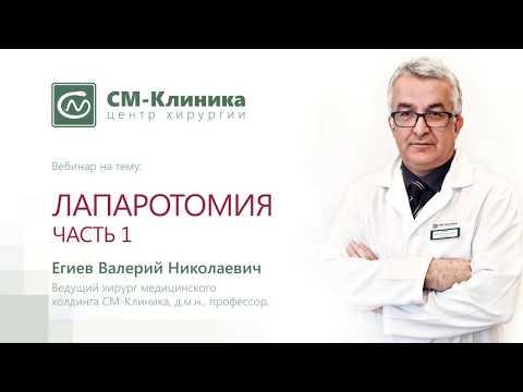 Вебинар: «Лапаротомия. Часть 1. Разрез» - Егиев В.Н. (07.11.2017)