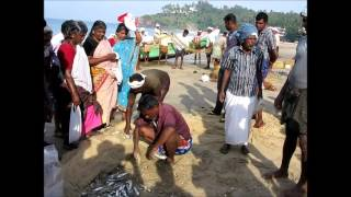 2013-12-25 Net fishing on Kovalam beach