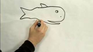 Easy Cartoon Drawing : How to Draw a Cartoon Whale