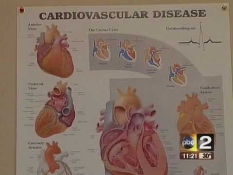 Difference in Heart Disease Based on Gender - MedStar Medical Group