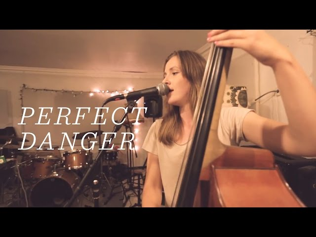 Ellen Andrea Wang – Perfect Danger