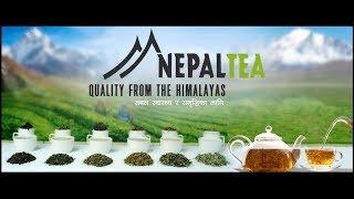 Nepal Tea Quality