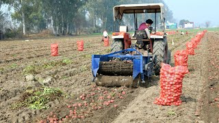 Potato Harvesting with Machine and Tractor by Village People💜RURAL life of Punjab/India/Villagelife