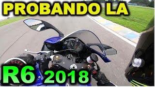 PROBANDO LA YAMAHA R6 2018 - BLITZ RIDER