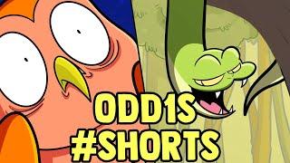 Owl and Snake #shorts