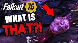 WHAT IS THAT CREATURE?! 😱 Part 8 | Funny Fallout 76 Gameplay