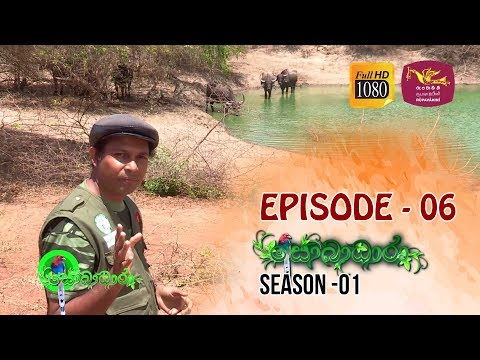 Sobadhara | Season - 01 | Episode 06 | Sobadhara Rupavahini