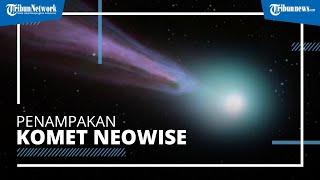 Penampakan Komet Neowise yang Diperkirakan Akan Mendekati Bumi 23 Juli 2020, Ekornya Sangat Panjang