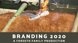 Branding 2020 thumbnail