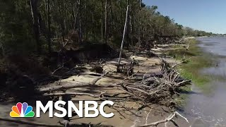 Key Primary State Faces Climate Change Crisis | The Last Word | MSNBC