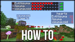 Minecraft: How To Display Hearts & Other Statistics Tutorial