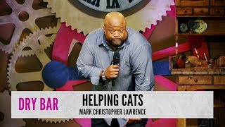 When the cats come to help.  Mark Christopher Lawrence