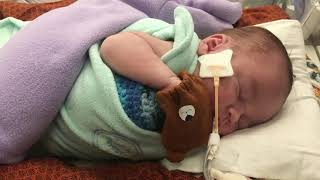 Newswise:Video Embedded cincinnati-children-s-uses-new-device-to-help-critically-ill-infants-with-kidney-failure