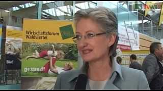 preview picture of video 'Jobmesse 2012 - Horn - Fa Alpson war dabei - www-alpson-at.mp4'