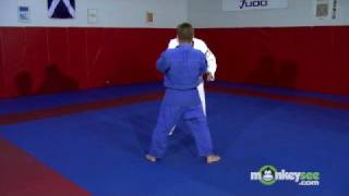 Basic Judo - Throws to the Rear