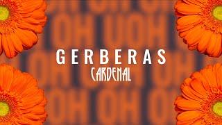 Cardenal - Gerberas (Lyric Oficial)