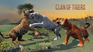 Clan of Tigers - by Wild Foot Games-- Role Playing -Google Play(Super HD Quality)