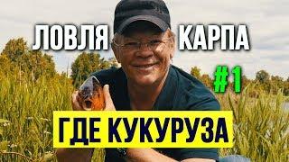 Как варят кукурузу для рыбалки