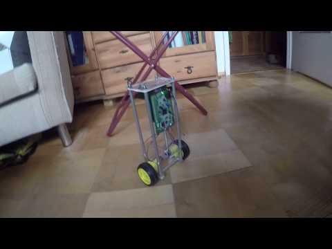 Ballancing robot ballances