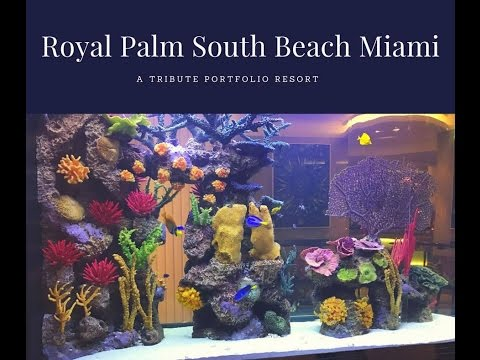 Royal Palm South Beach Miami, a Tribute Portfolio Resort – Room Tour – Walkthrough