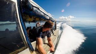 Jeb Corliss - Bull Sharks - Fiji