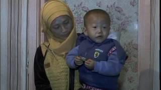 Переаселенцы в Мамлютском районе Рус