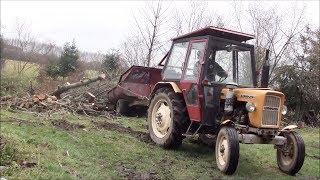 Dzień z życia na wsi / ścinanie drzewa/ trzydziestka w opałach i inne