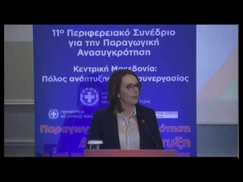 Παπανάτσιου: Το 80% των ελληνικών επιχειρήσεων σε γειτονικές χώρες είναι εικονικές